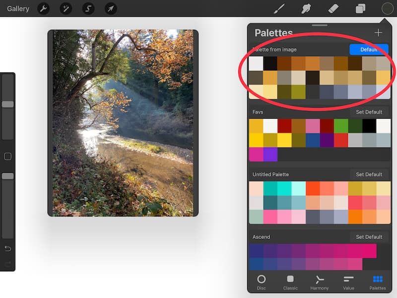 procreate color palettes from images