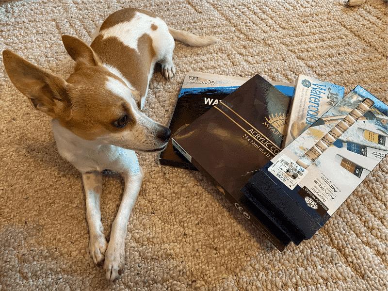 paitn sets with dog