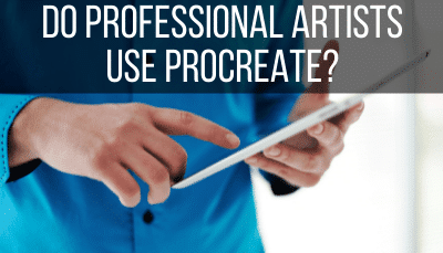 do professional artists use procreate