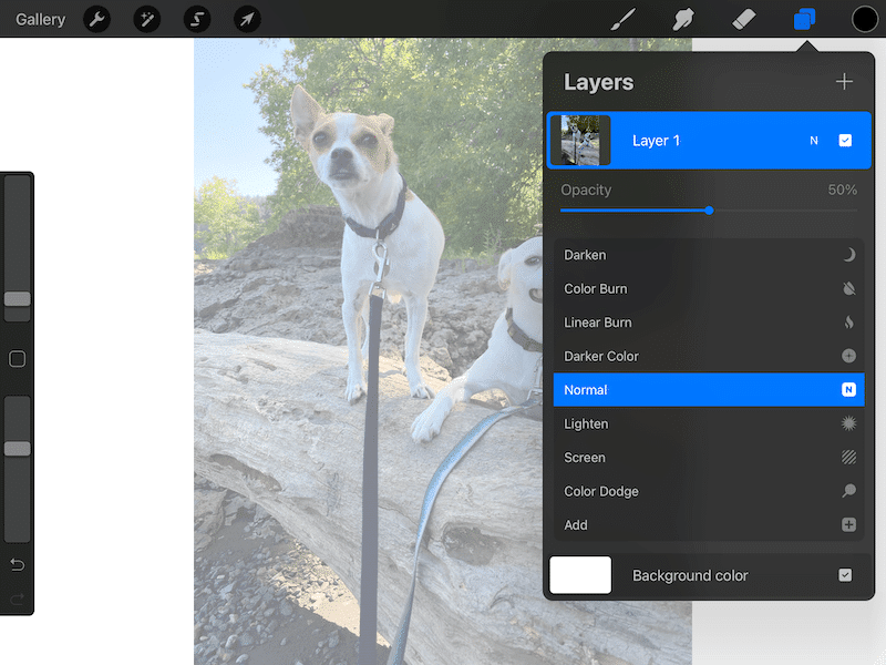 Procreate lower image opacity for tracing