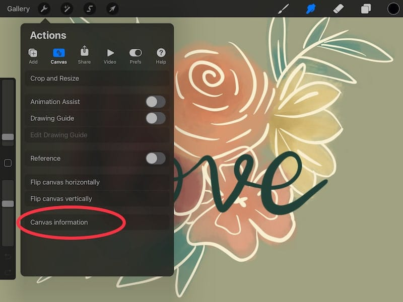 Procreate canvas information in the Actions menu