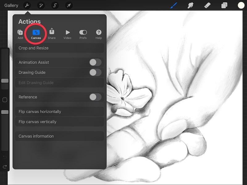 procreate canvas settings