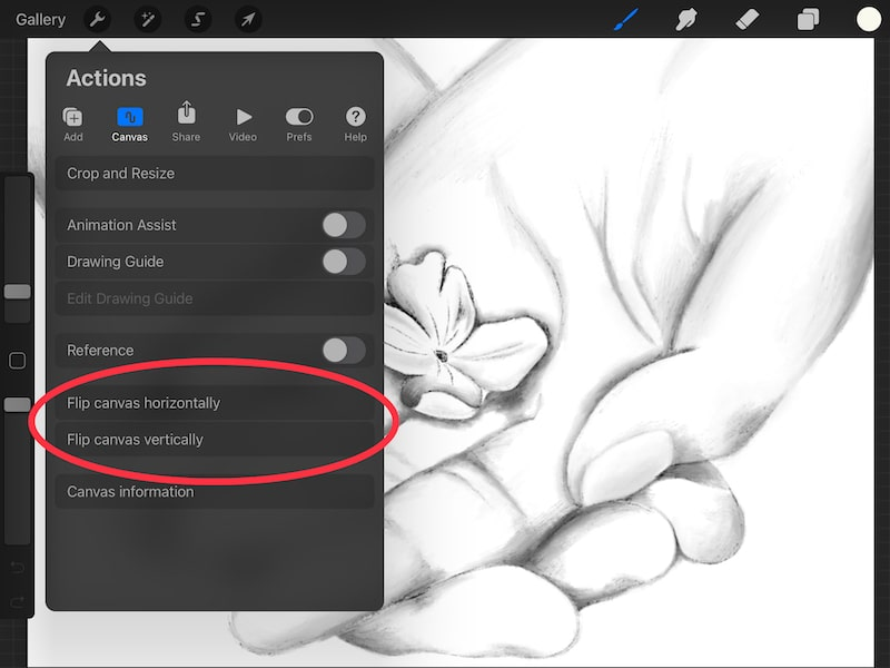 procreate how to flip a canvas