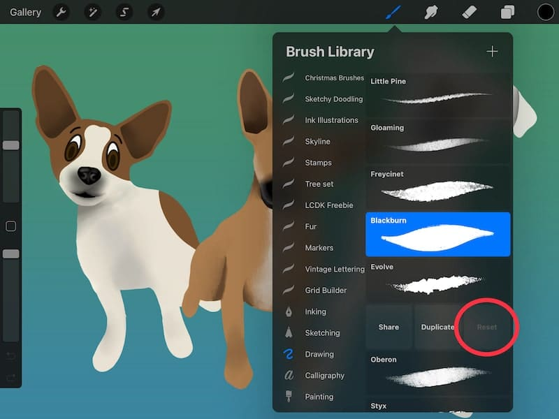 procreate can't reset brushes