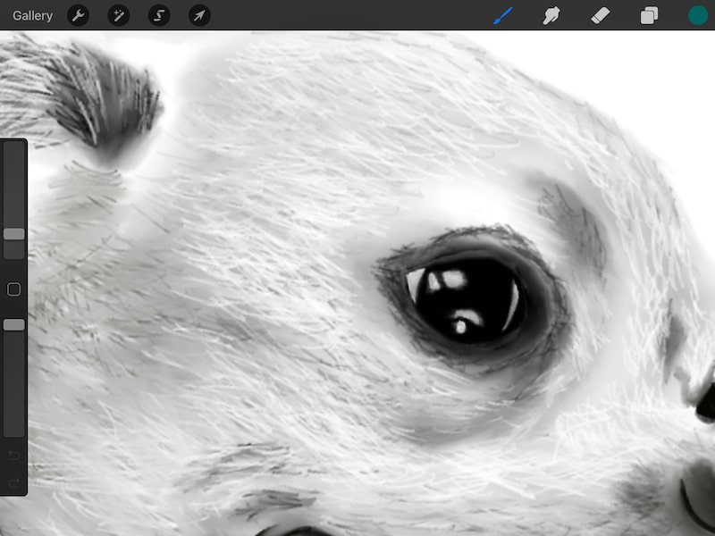 Procreate zoomed in smudge tool for shading